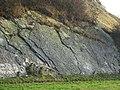 Silurian Limestone Slabs, Wren's Nest, Dudley - geograph.org.uk - 636451.jpg