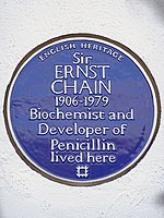 Sir ERNST CHAIN 1906-1979 Biochemist and Developer of Penicillin lived here.jpg