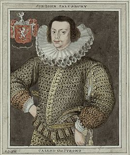John Salusbury (poet) Welsh knight, politician and poet, died 1612
