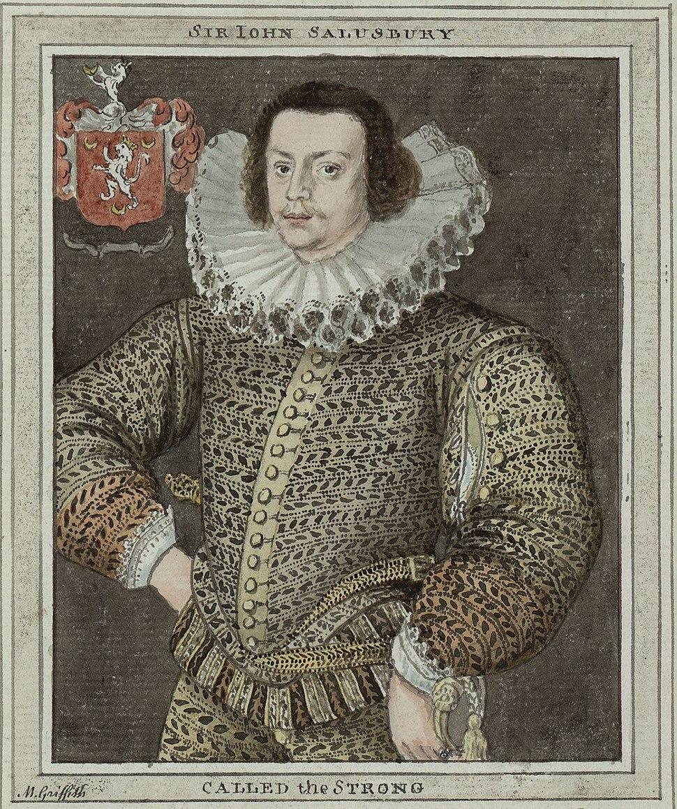 Sir John Salisbury by Moses Griffith 02197