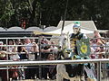 Sir Romeo at Norcal Ren Faire 2010-09-19 6.JPG