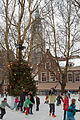 Skating around the christmas tree in Delft (4211905462) (2).jpg