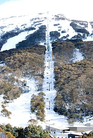 Thredbo, NSW, has the largest vertical drop of any Australian ski resort at 672m SkiingThredbo2008.jpg