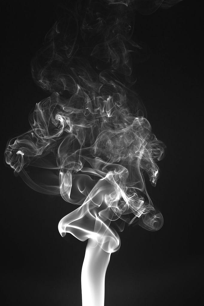 Up In Smoke Tour  Free Download