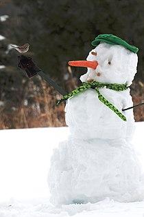 Snowman with bird-28Feb2010.jpg