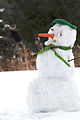 Snowman with bird-28Feb2010.jpg