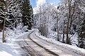 Snowy Drive.jpg