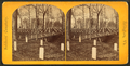 Soldiers' cemetery, Arlington, Va, from Robert N. Dennis collection of stereoscopic views.png