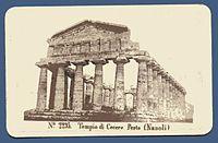 Sommer, Giorgio (1834-1891) - Tempio di Cerere a Paestum (Napoli) ca 1860.jpg