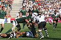 South Africa vs Fiji 2007 RWC (4).jpg