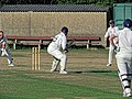 Southwater CC v. Chichester Priory Park CC at Southwater, West Sussex, England 096.jpg