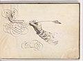 Specimens of Penmanship after Jan van de Velde and other Calligraphy Books MET DP372397.jpg