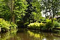 Spreewald Impressionen - Flickr - tm-md (107).jpg