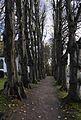 St-Marien-Kirche Tolk IMGP3567 smial wp.jpg
