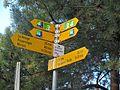 St-Prex-Lausanne-Ouchy (12.12.12) 202 (8436089712).jpg
