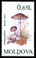 Stamp of Moldova 083 - 2.png