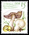 Stamps of Germany (DDR) 1980, MiNr 2553.jpg