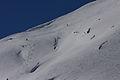 Steirischekalkspitze0186.JPG