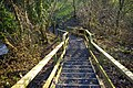 Steps down to Stainton Beck - geograph.org.uk - 1103297.jpg