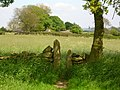 Stile in the shade - geograph.org.uk - 178522.jpg
