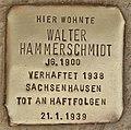 Stolperstein für Walter Hammerschmidt (Cottbus).jpg