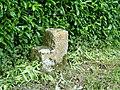 Stone Mounting Block - geograph.org.uk - 17169.jpg