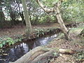 Stream at western edge of grid square - geograph.org.uk - 583653.jpg