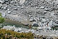 Stream in Mount Cook National Park NZ 03.jpg