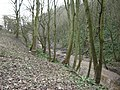 Stream running toward the Sea, Danes Dyke - geograph.org.uk - 1126796.jpg