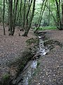 Stream through Coldfall Wood - geograph.org.uk - 240914.jpg