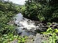 Stream west of Kylemore Abbey (6048002034).jpg