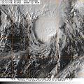 Subtropical Storm Nicole.jpg