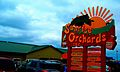 Sunrise Orchards Inc. - panoramio.jpg