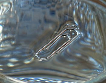 English: Surface tension: a clip floating in a...