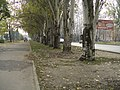 Taganrog, Rostov Oblast, Russia - panoramio (27).jpg