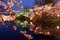 Takada Castle Cherry Blossom Festival.jpg