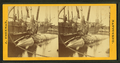 Taking the blubber off a whale at Nantucket, by Freeman, J. (Josiah) 2.png