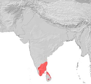 Tamil Nadu Online Chat Rooms