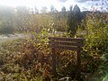 Tampere, Finland - panoramio (10).jpg