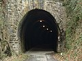 Tarka Trail, Landcross tunnel - geograph.org.uk - 71368.jpg