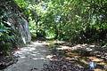 Tayrona Walk - Calabazo to Pueblito (4626289650).jpg