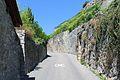 Terrasses de Lavaux - panoramio (19).jpg