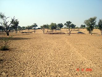 Thar Desert - View of the Thar desert