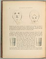 The American Drawing Book- Manual for the Amateur, Basis of Study for the Professional Artist MET DP102040.jpg