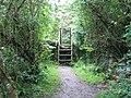 The Anglesey Coastal Path near Trwyn-du ^3 - geograph.org.uk - 489771.jpg