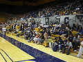 The Bench at women's volleyball, SJSU at Cal 2009-09-12.JPG