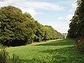 The Glade, Great Hampden - geograph.org.uk - 229833.jpg
