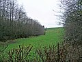 The Huntshaw valley - geograph.org.uk - 665856.jpg