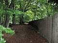 The Long Fence beside the footpath through Buckland Hoo wood - geograph.org.uk - 1542698.jpg