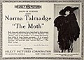 The Moth (1917) - 1.jpg